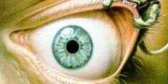 أحاديث عن العين والحسد
