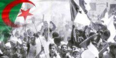 احداث معركة الجزائر تعرف معنا ابرز واهم تفاصيل احداث معركة الجزائر