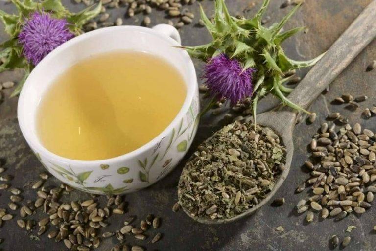علاج مرض الكبد بالاعشاب تعرف على أفضل الأعشاب للعلاج وتقليل المضاعفات