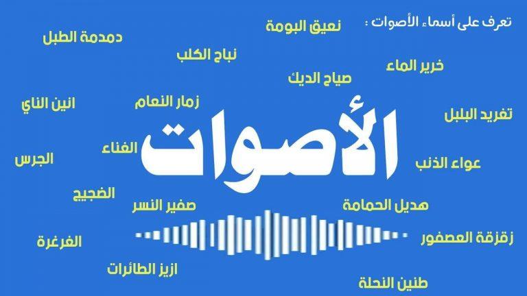 أسماء الأصوات في اللغة العربية