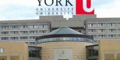 جامعة يورك في كندا  تعرف على شروط القبول في جامعة يورك
