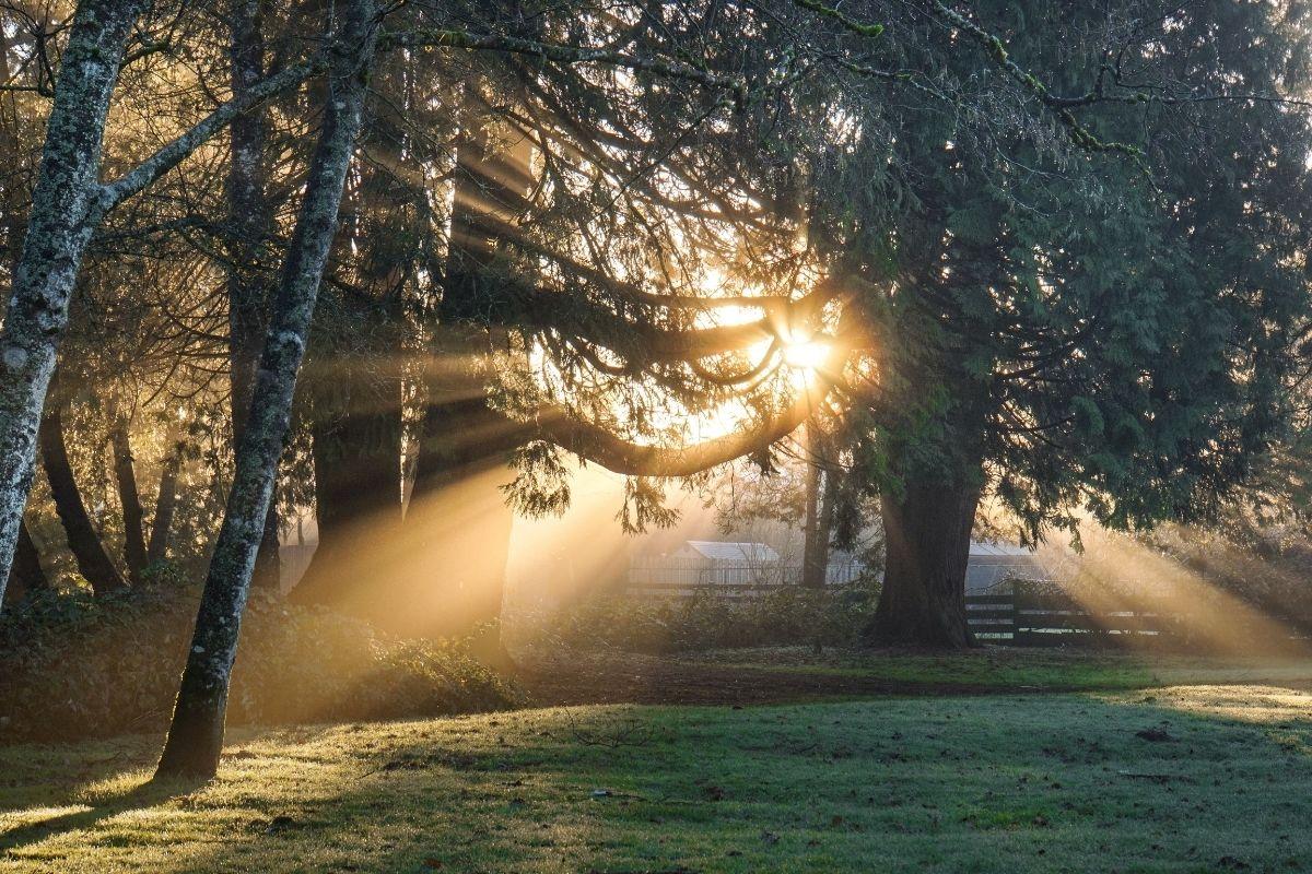 صباح الخيرات – اجمل واحلى صور عبارات صباح الخير