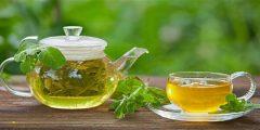 أفضل أنواع الشاي الأخضر لتخفيف الوزن أشهر 6 أنواع من الشّاي الأخضر للتّنحيف
