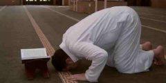 كم عدد النوافل بعد الصلاة