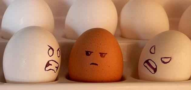 كيفية التعامل مع الناس التي تكرهني  طرق وأساليب التعامل مع من يكرهك