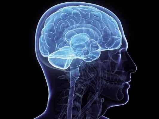 طرق تنمية الذاكرة  كيف أنمي ذاكرتي ؟