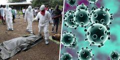 أعداد المصابين بفيروس كورونا اليوم الخميس