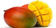 المانجو : فاكهة الصيف المُحببة وفوائدها