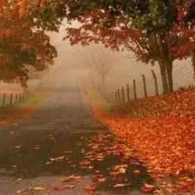 معلومات عن فصل الخريف