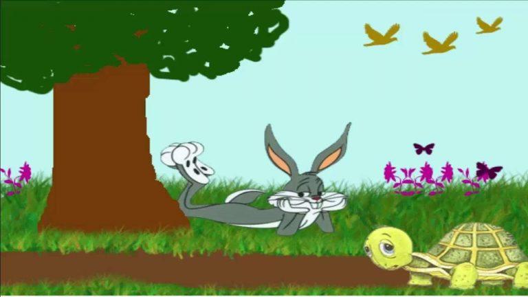 قصة السلحفاة والارنب