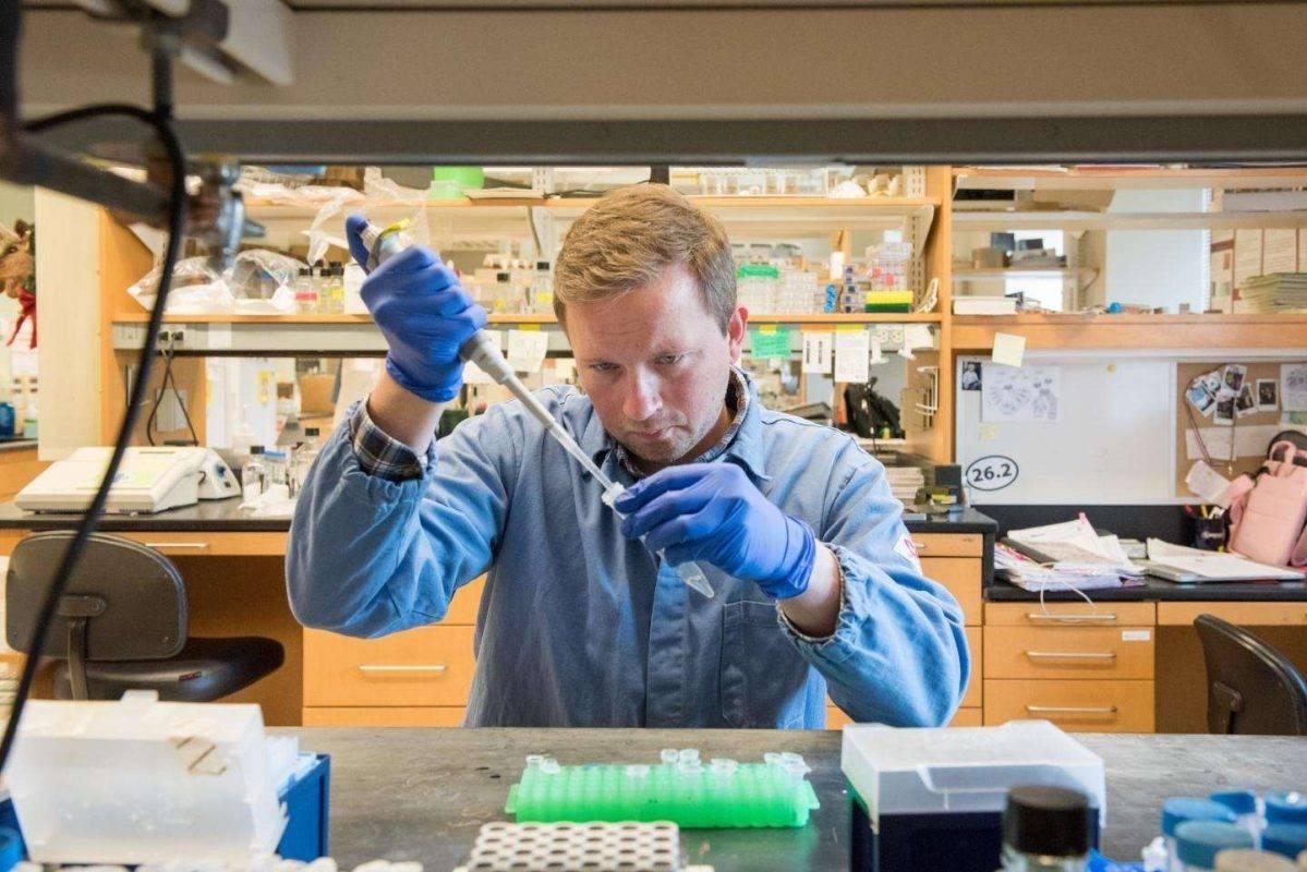 مهام تخصص البيولوجيا