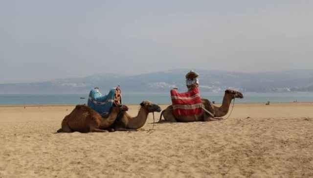 السياحة في طنجة