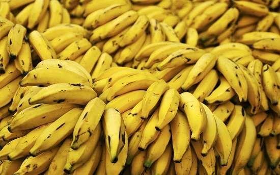 أهم الفواكه التي تتم زراعتها في جمهورية إفريقيا الوسطى