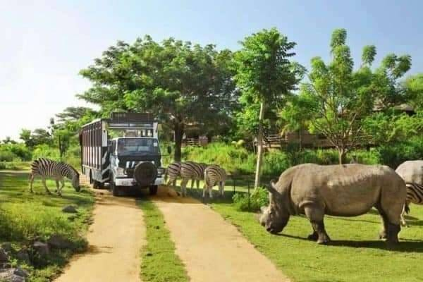 رحلة إلى تامان سفارى اندونيسيا ..
