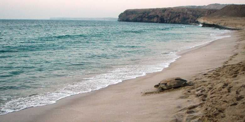 السفر إلى الشرقية عمان