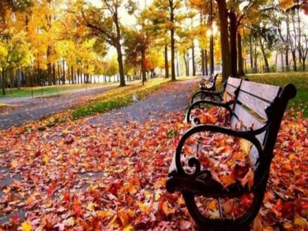 موضوع تعبير عن الخريف بالعناصر والافكار