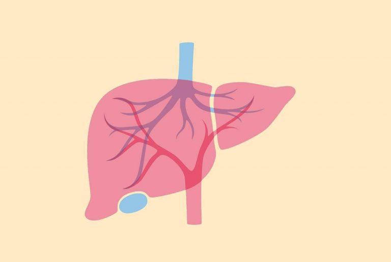 ارتفاع انزيمات الكبد للرضع الأسباب والأعراض التي تحدد الإصابة به