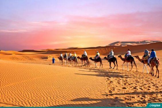 أين تقع الصحراء المغربية