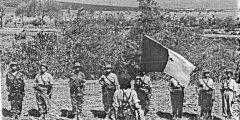 تاريخ الجزائر الحديث كيف عانت الجزائر حتى إعلان استقلالها