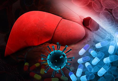 علاج مرض الكبد الوبائي  تعرف على علاج كافة انواع التهاب الكبد الوبائي