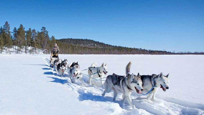 السياحة في فنلندا  أجمل 10 نشاطات رائعة