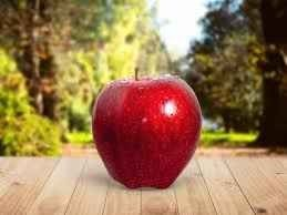 زراعة التفاح