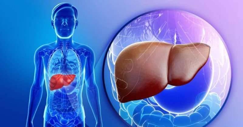 انزيمات الكبد المرتفعة  تعرف على اعراض وعلاج وكا ما يخص ارتفاع انزيمات الكبد