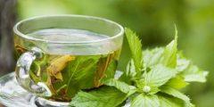 أضرار كثرة الشاي الأخضر